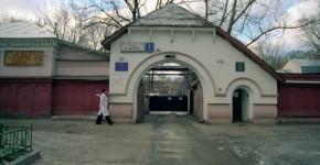 Улица 8 Марта. Сказочные ворота. Фото А.Степанова