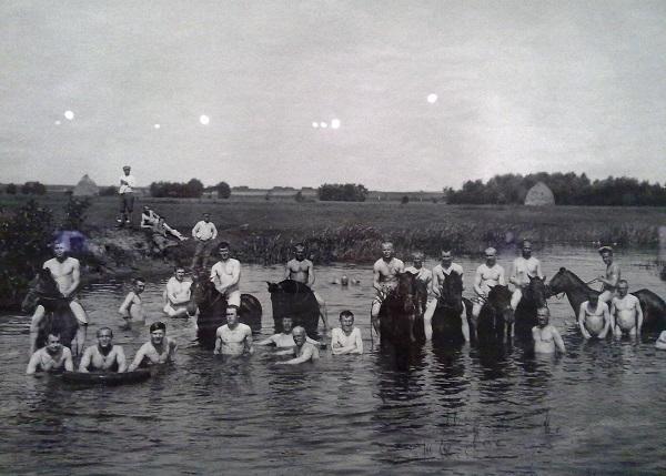 На отдыхе. Купание лошадей. 1915-1918