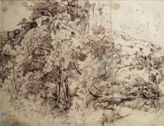 Камиль Коро. Лесной пейзаж. 1826-1827