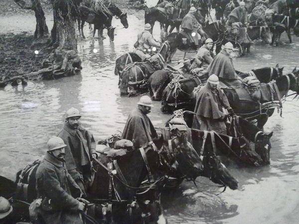 На водопое. Ипрекур, Мёз. 5 марта 1916 года